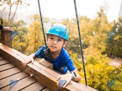 飞越丛林探险设备-树上探险拓展设备