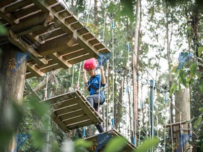 丛林穿越器械-飞越丛林探险器材
