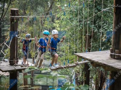 飞越丛林探险器械-树上探险拓展器械