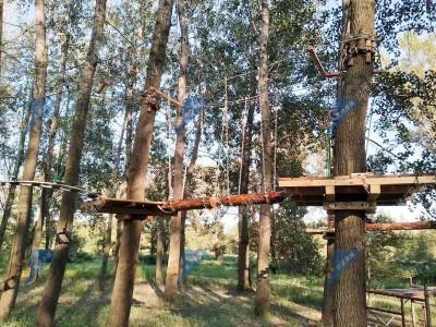 飞跃丛林探险器材-丛林拓展器材
