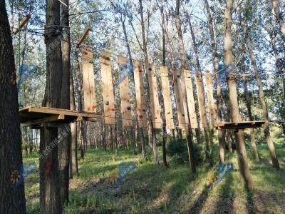 丛林探险拓展项目-树上探险拓展项目
