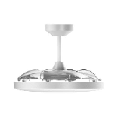 基礎風扇燈