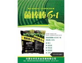 内蒙古微生物菌肥