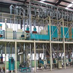 日加工玉米100-150吨联产生产线