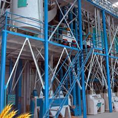 北京60吨中型面粉机生产设备(钢架结构)